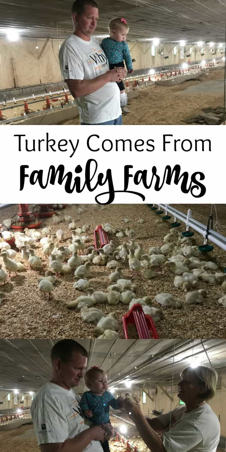 turkey comes from family farms