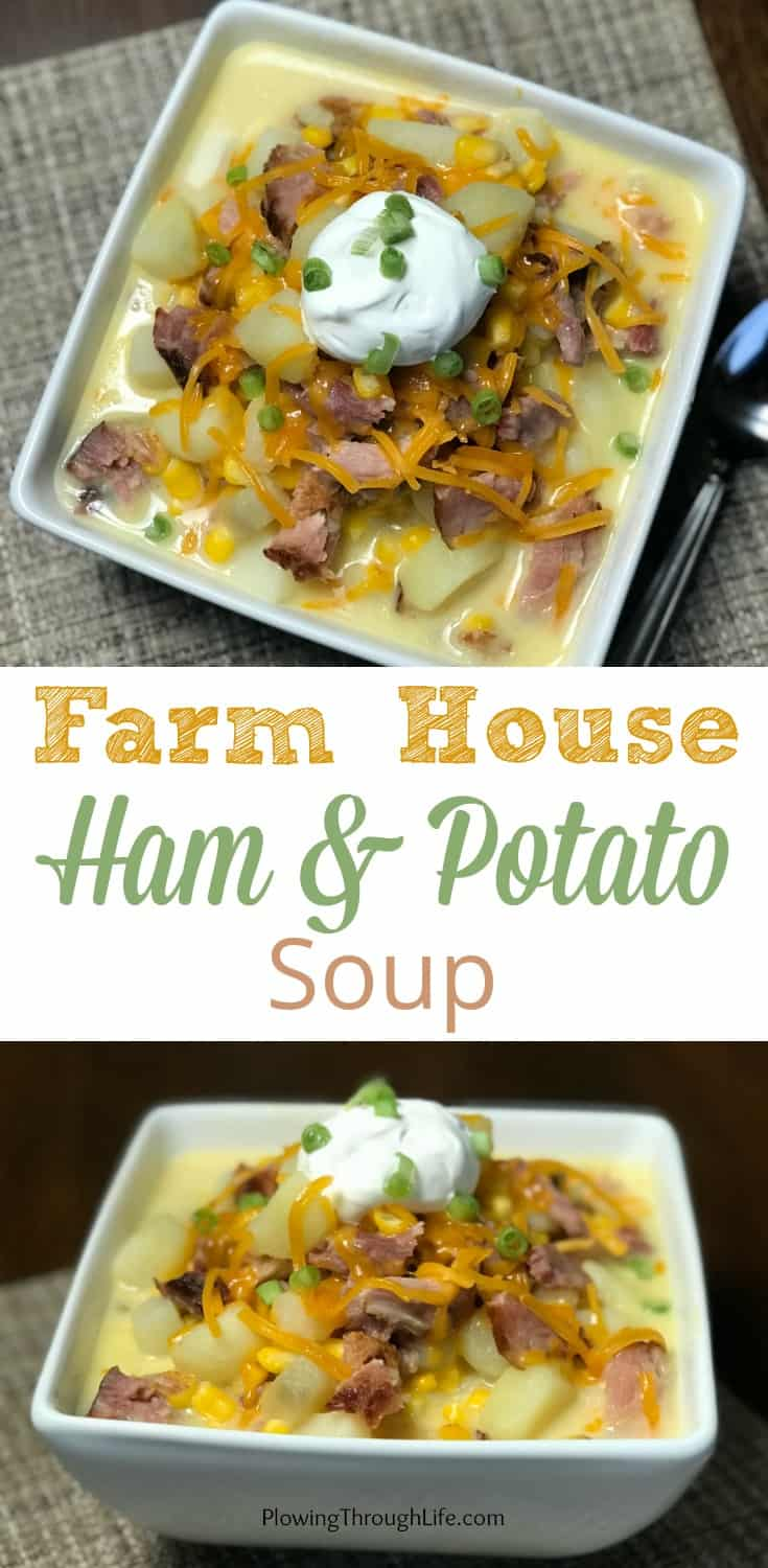 Collage of Leftover ham in ham and potato soup