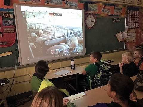kids watching virtual field trip to a pig farm