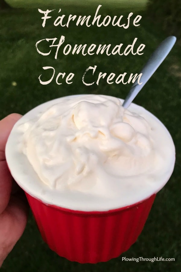 Our family's favorite food would have to be old fashioned, homemade vanilla ice cream.  This rich and delicious homemade ice-cream recipe is the best ice cream treat to eat on a hot day.