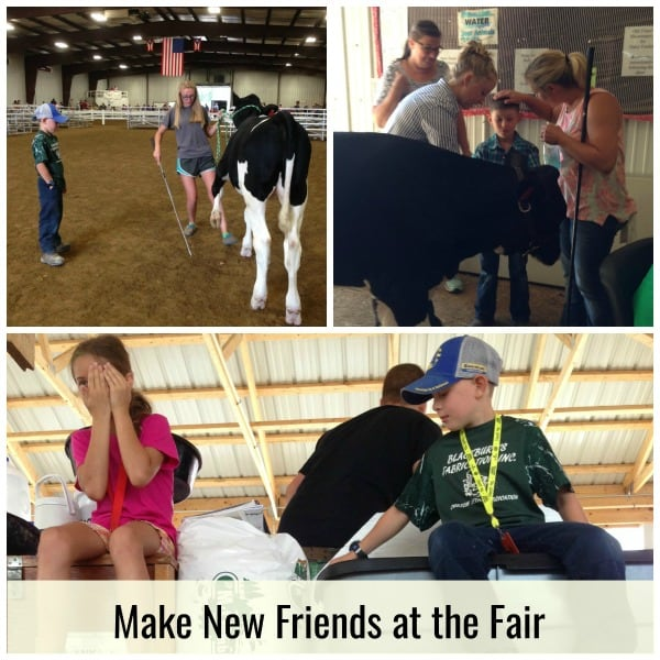 Collage of kids working with animals at county fair