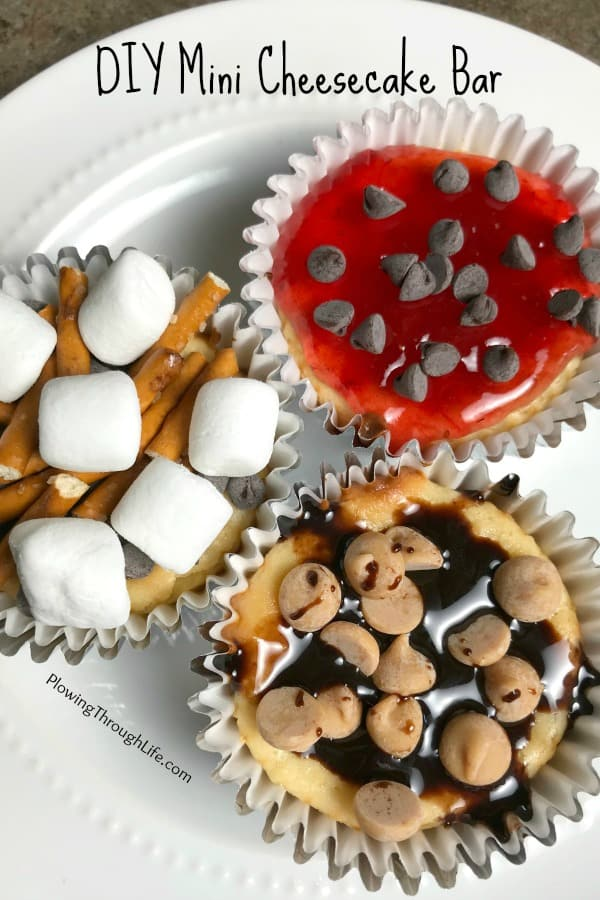 Mini individual cheesecakes with a variety of toppings from a dessert bar.