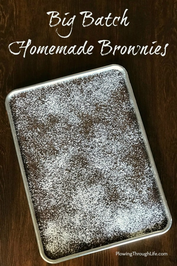 Do you need an easy chocolate dessert to feed a crowd?  This big batch of homemade brownies is super easy and very delicious!