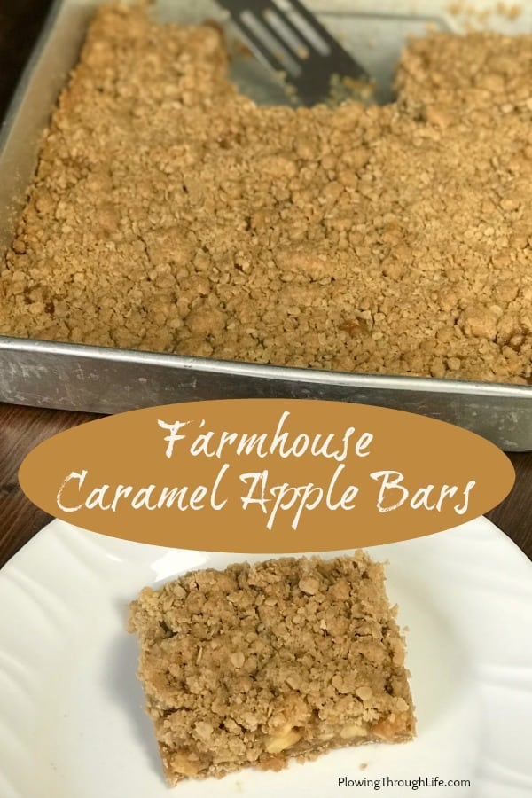 Caramel Apple Bars in a baking pan next to one on a white plate