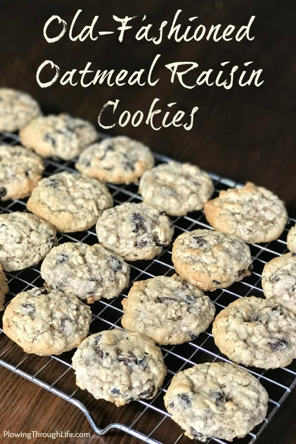 Close up old-fashionedoatmeal raisin cookies on baking rack
