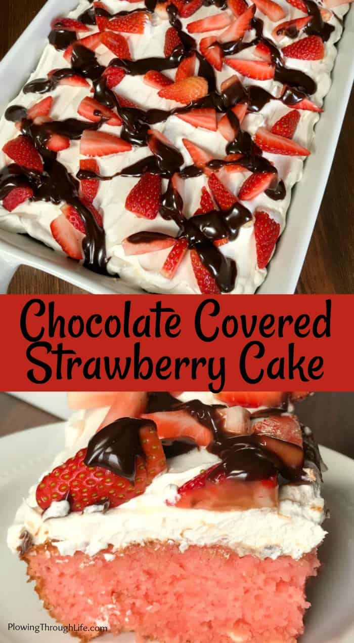 Chocolate Covered Strawberry Cake iced with Cool Whip, hot fudge and fresh strawberries in a collage with text