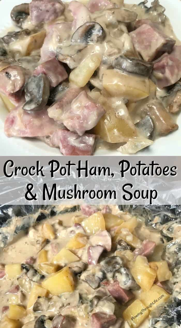 Are you craving a mix of classic flavors blended together in a crock pot?  My father-in-law said this meal is a ten out of ten!  Crock Pot Ham, Potato & Mushroom soup is a simple recipe that is hearty and delicious!  #easycrockpotrecipe #hamandpotatoes