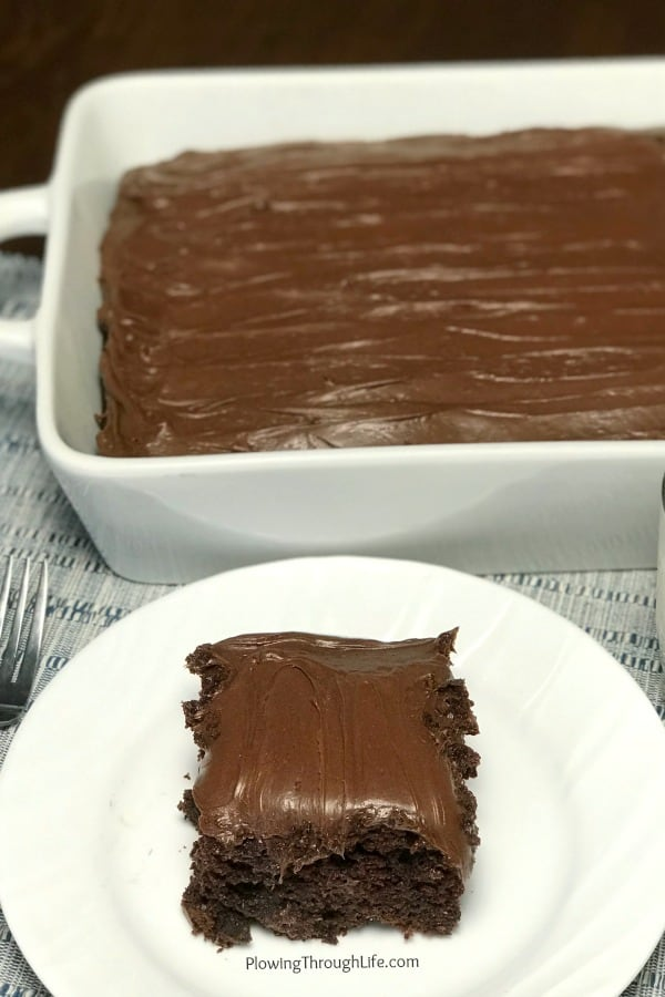 Square piece of moist chocolate cake on a white plate next to dish full of cake