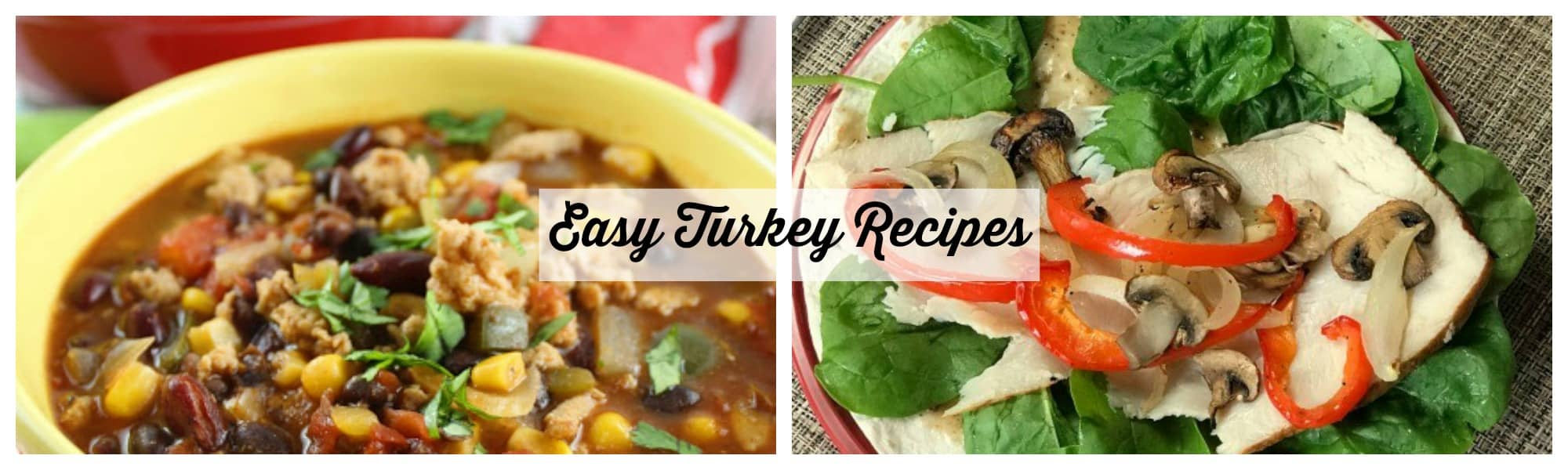 Easy Turkey Recipes