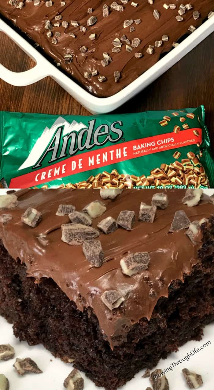 Mints in a rich and moist, but EASY to make chocolate cake from a box