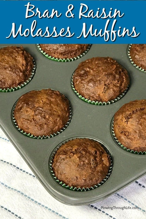 Muffin tin with Bran and Raisin Molasses Muffins that are packed full of fiber and healthy on a dish towel
