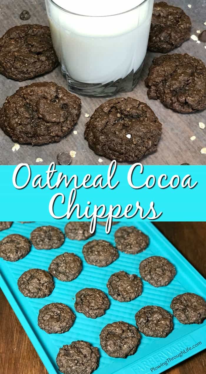 Collage of Oatmeal Cocoa Chippers chipper cookies