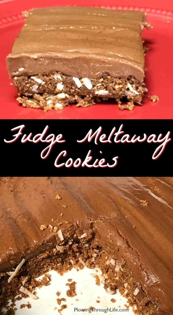 Collage of Fudge Meltaway Cookies made with a layer of grahamcracker crumbs, chocolate, butter and coconut topped with a perfectly creamy fudge makes an amazing bar cookie!