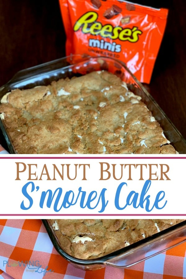 Our family LOVES this rich Peanut Butter S'mores Cake all year around! Mini peanut butter cups add a wonderful surprise to the graham cracker and marshmallow cream layers. This s'mores cake is easy to make and always a crowd pleaser!