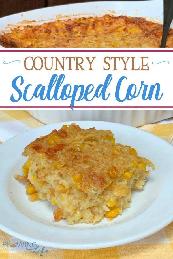 Scalloped Corn with cheese on a white plate next to a 9x9 casserole dish
