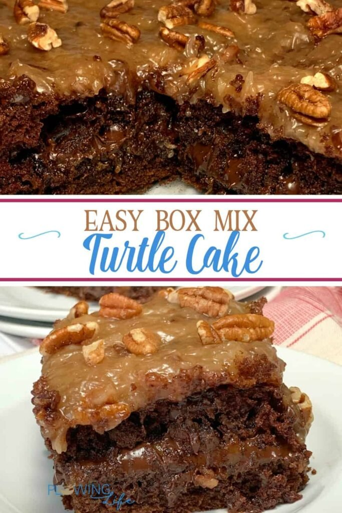 Easy Box MIx Turtle Cake made with German Chocolate box mix with a rich caramel layer in the middle