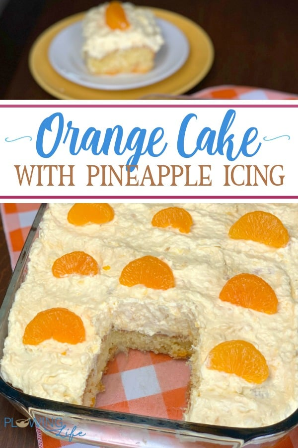 This moist orange cake with Pineapple Icing is fruity and irresistible! A box of cake mix with oranges added and three light ingredients mixed together for the icing is a very light and refreshing!