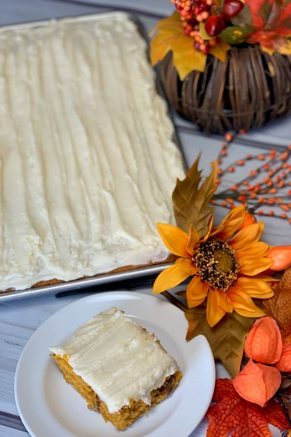 sheet pan or jelly roll pan of pumpkin bars covered in a thick layer of cream cheese frosting