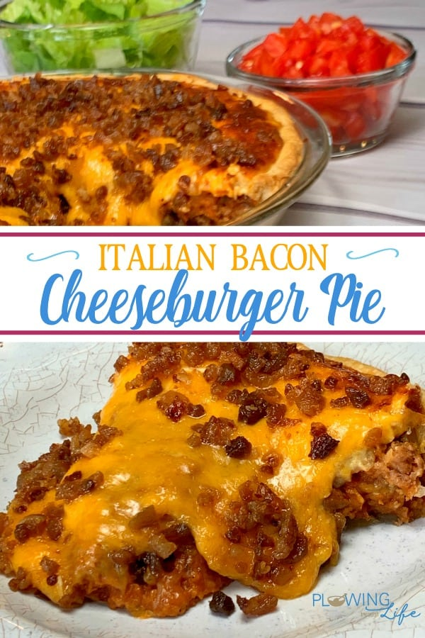 Cheeseburger Pie with Pie Crust takes a classic meal to a whole new level of enjoyment!