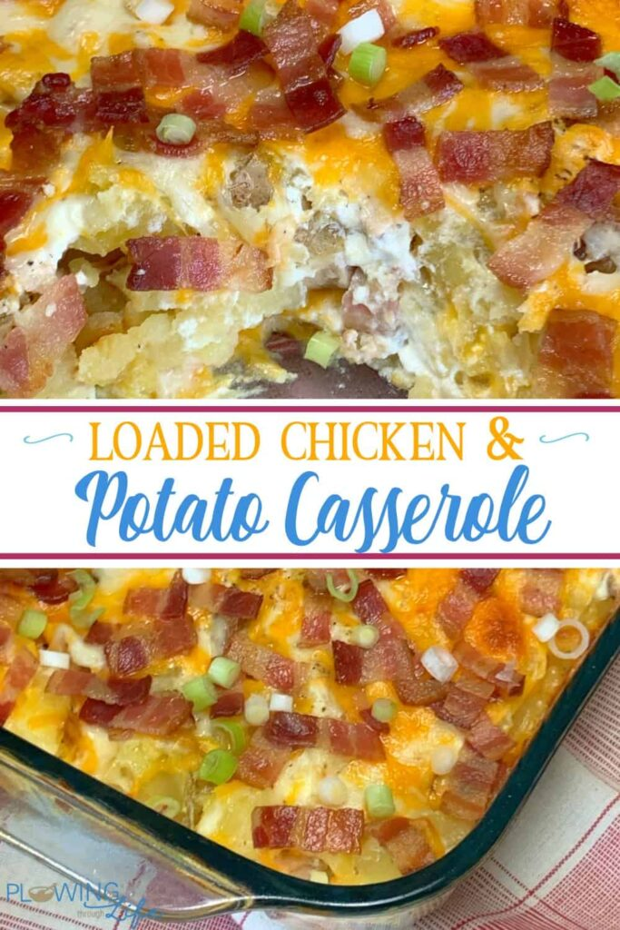 Chicken casserole with potatoes and loaded with cheese, sour cream, bacon and green onions make a delicious and filling meal. Chicken and Twice Baked Potato Casserole casserole can feed a crowd at potlucks, make freezer meals or extra lunches for your family.