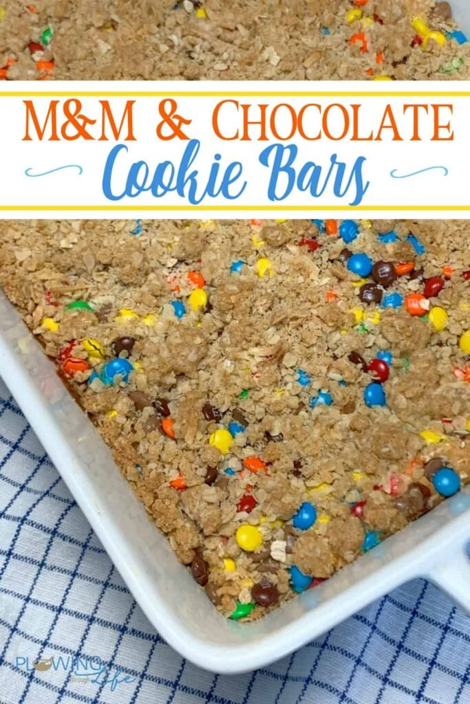 These M&M & chocolate oatmeal cookie bars offer a nice spin on Monster Cookies by adding a layer of sweetened condensed milk and peanut butter.  The oats keep the sugar from being overpowering and too sweet.  The blend is just right and very enjoyable!