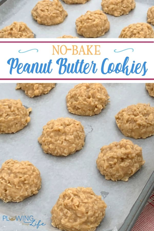 Classic No-Bake Peanut Butter Cookies with text.