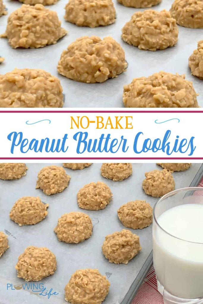 Collage of the Best No-Bake Peanut Butter Cookies without cocoa