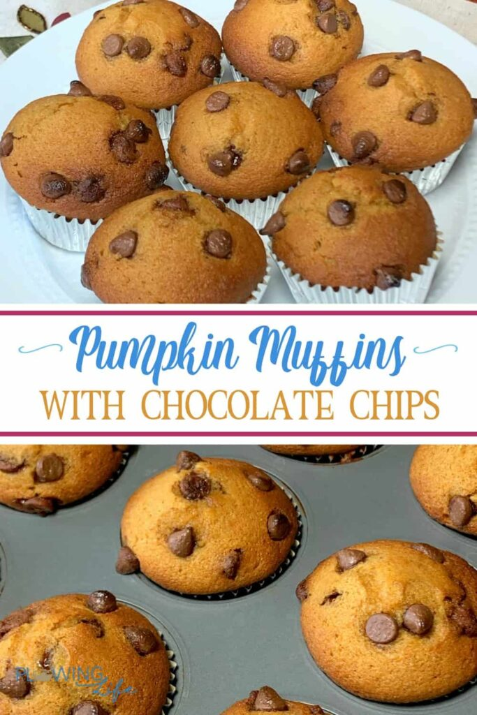 Collage of Pumpkin Chocolate Chip Muffins with Applesauce and text on pictures