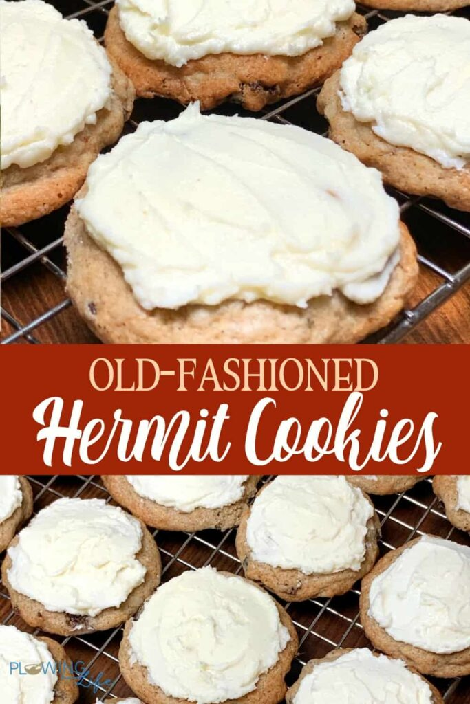collage of old fashioned hermit cookies
