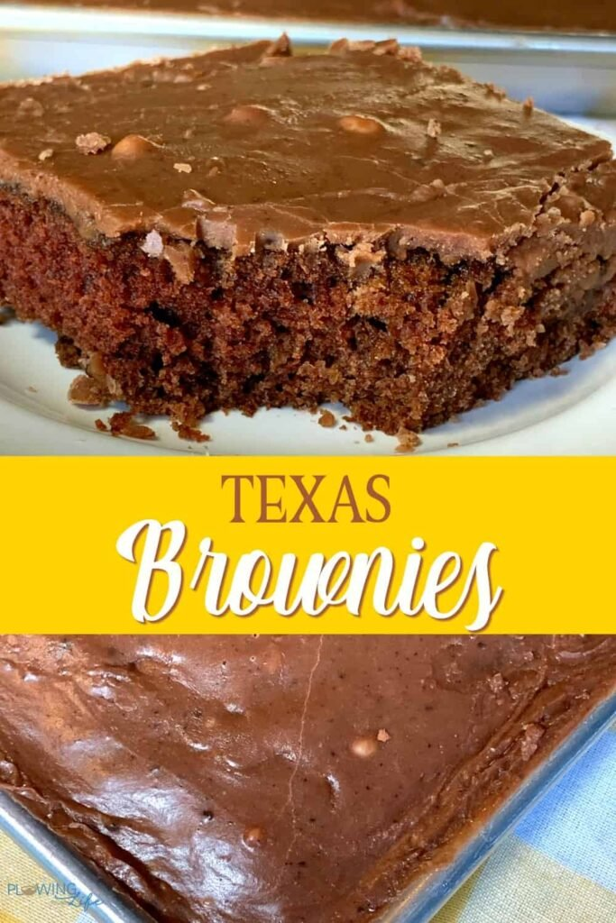 Collage of chocolate frosted Texas brownies and one with a bit out of it