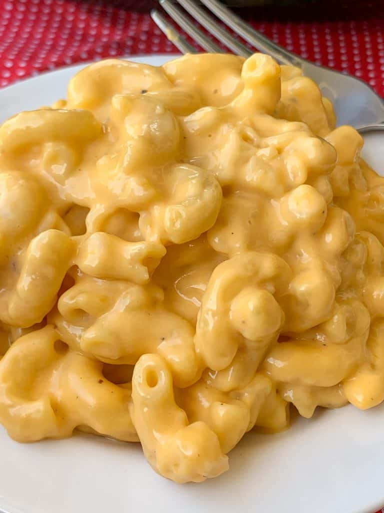 Easy, creamy mac and cheese with evaporated milk on white plate made in slow cooker