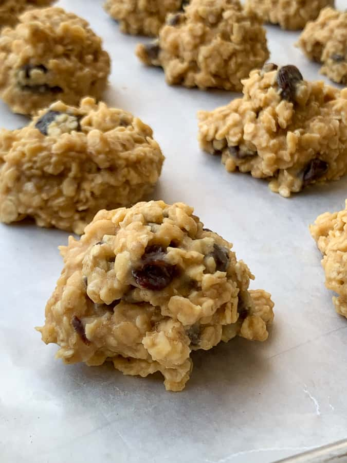 no-bake cookies that are orange flavored with raisins