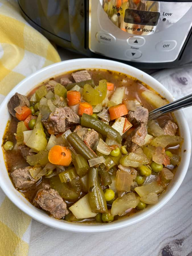 Bowl of beef and vegetable soup sitting by a Crockpot