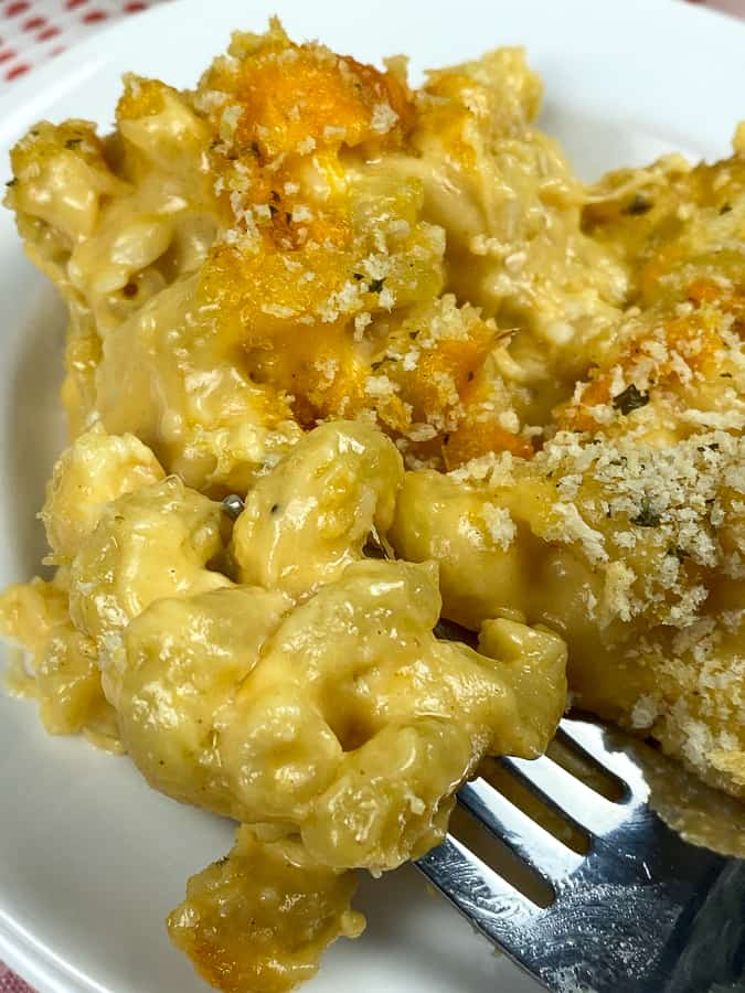 Cavatappi mac and cheese on a fork