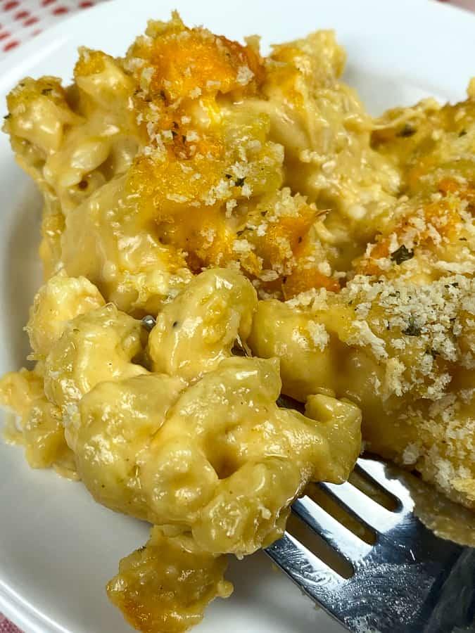 Cavatappi mac and cheese on a fork