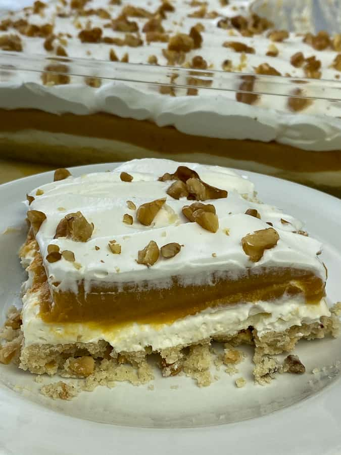 Delicious piece os butterscotch pudding dessert with cream cheese and Cool Whip