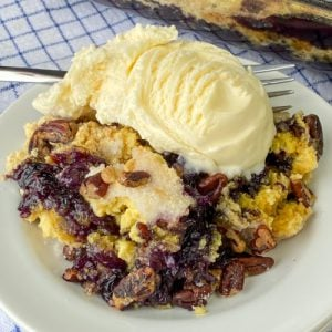 Vanilla ice cream on top of blueberry crunch cake