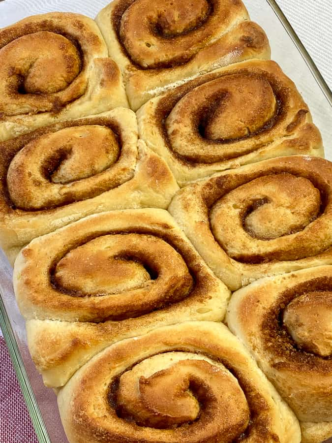Eight of the best homemade cinnamon rolls in a 9 x 13 pan