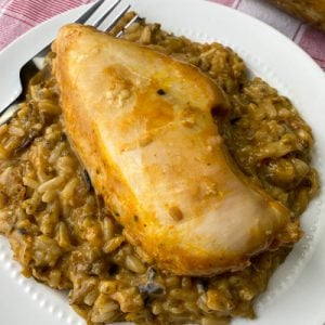 Chicken breast on wild rice on white plate